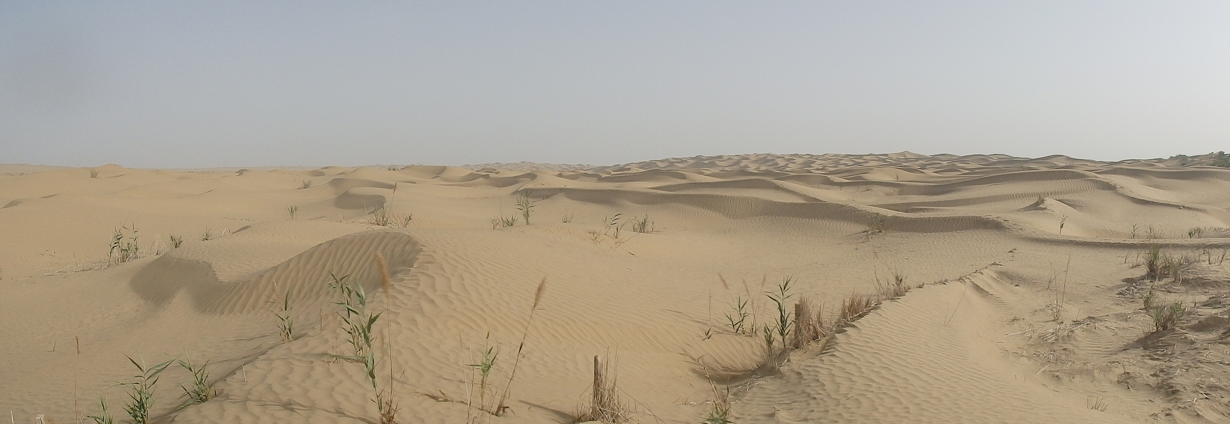 The Taklamakan Desert (Xinjiang, China)