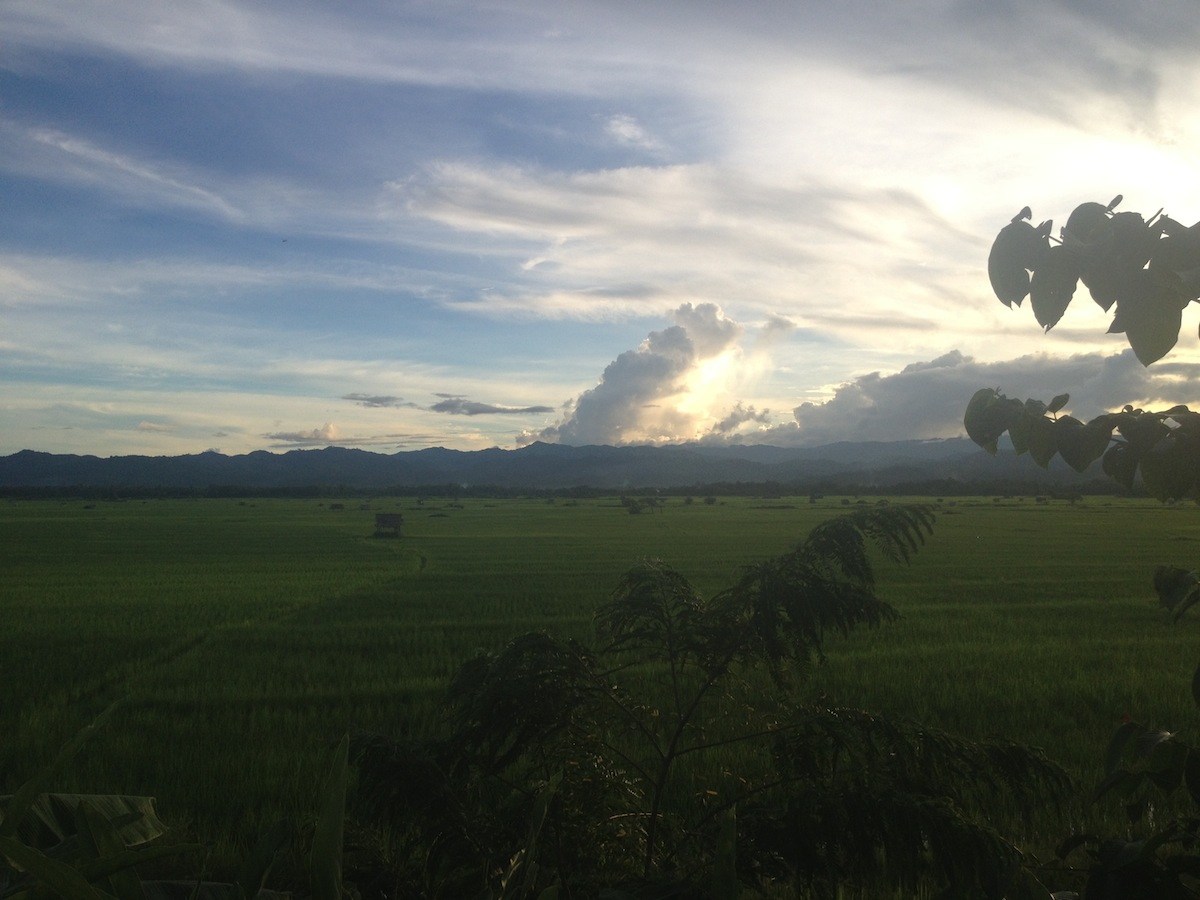 Rice fields and mountains views at sunset (Luang Namtha, Laos)