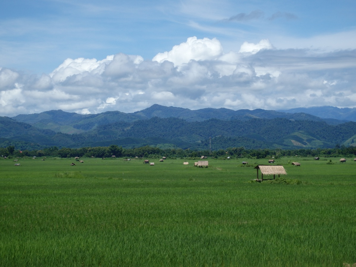 Laos – Lovely and Luscious, A Real Forest Retreat